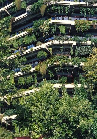 jardin alzheimer immeuble balcons - img