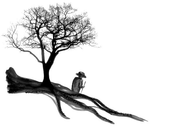 jardin de soin écopsychologie_