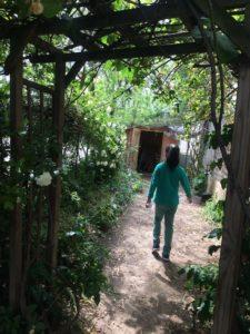 Nicole_Brès_Nature-en-ville-therapie_jardin therapeutique_5